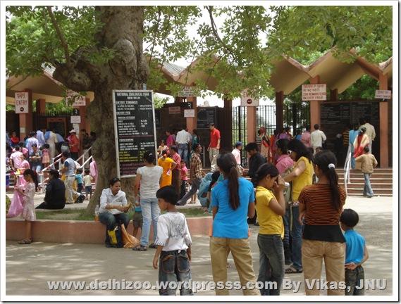 Delhi zoological park, Delhi zoo, Delhi animals, Delhi chidiyaghar, Vikas JNU Delhi zoo, New Delhi zoo, Delhi wild life, Delhi culture, Delhi greenery, Delhi environment, Delhi travel, Delhi tourism, website blog on Delhi zoo, India zoo, India wildlife, animals in India, Delhi zoo Mathura Road